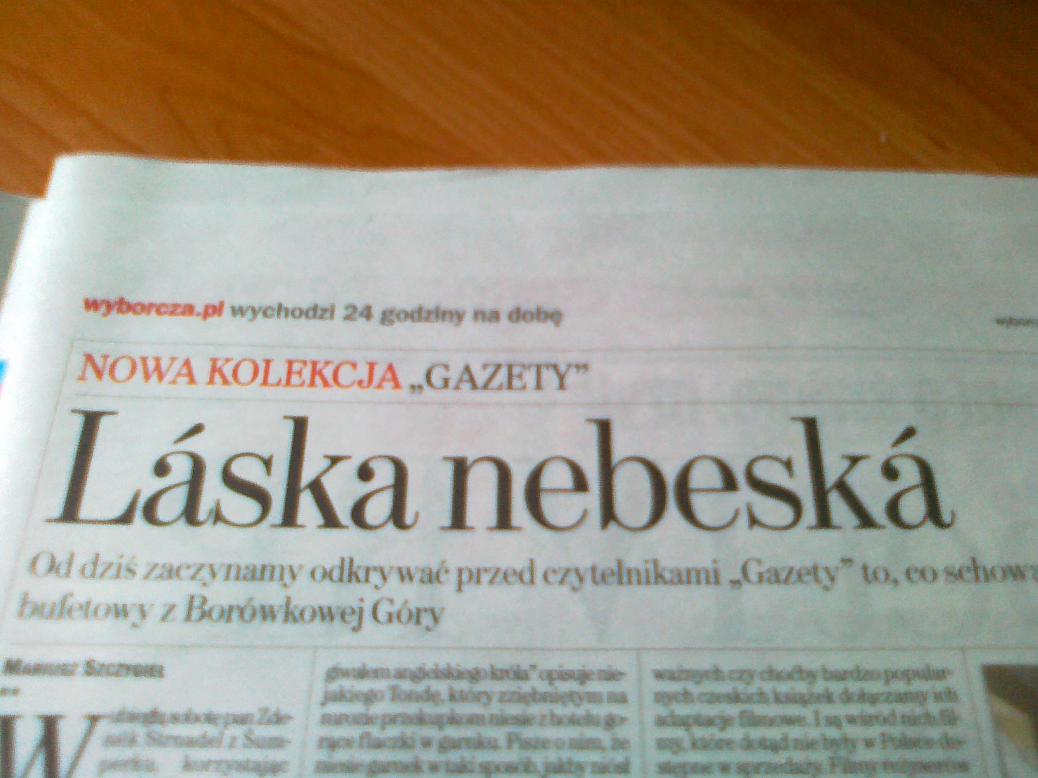 Jolanta Sztejka: Polacy nie gęsi?