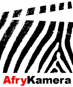 Przemek Stępień: Kęs Afryki