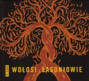wolosi-i-lasoniowie-b-iext2330430